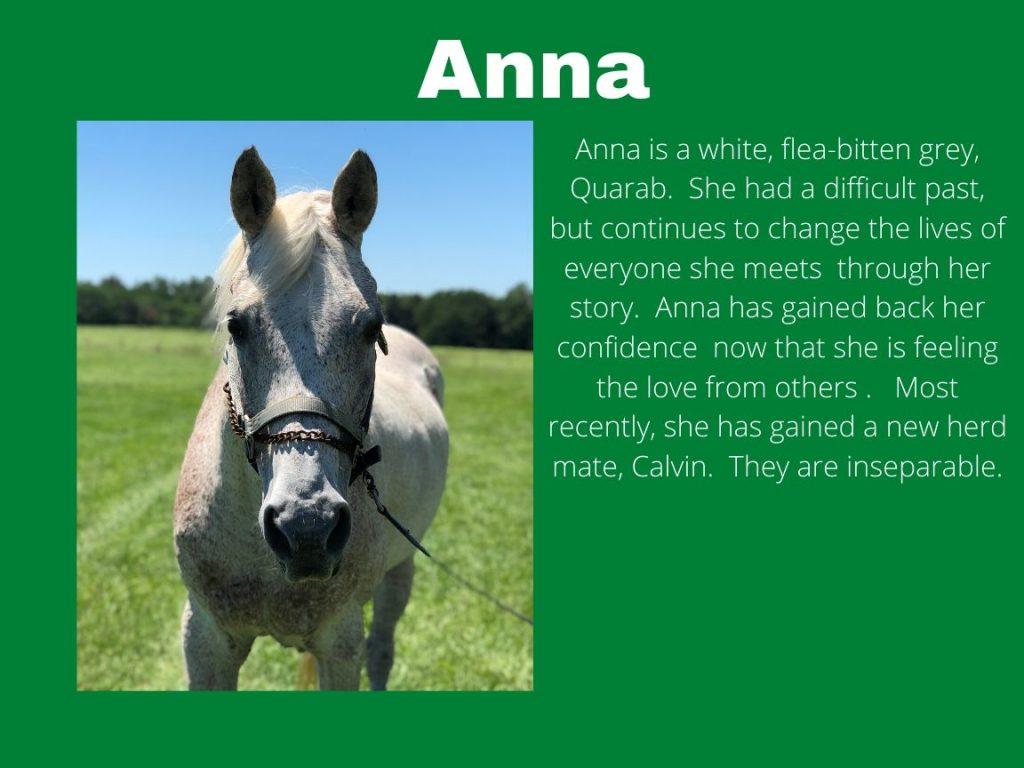 Anna - Photo and Bio