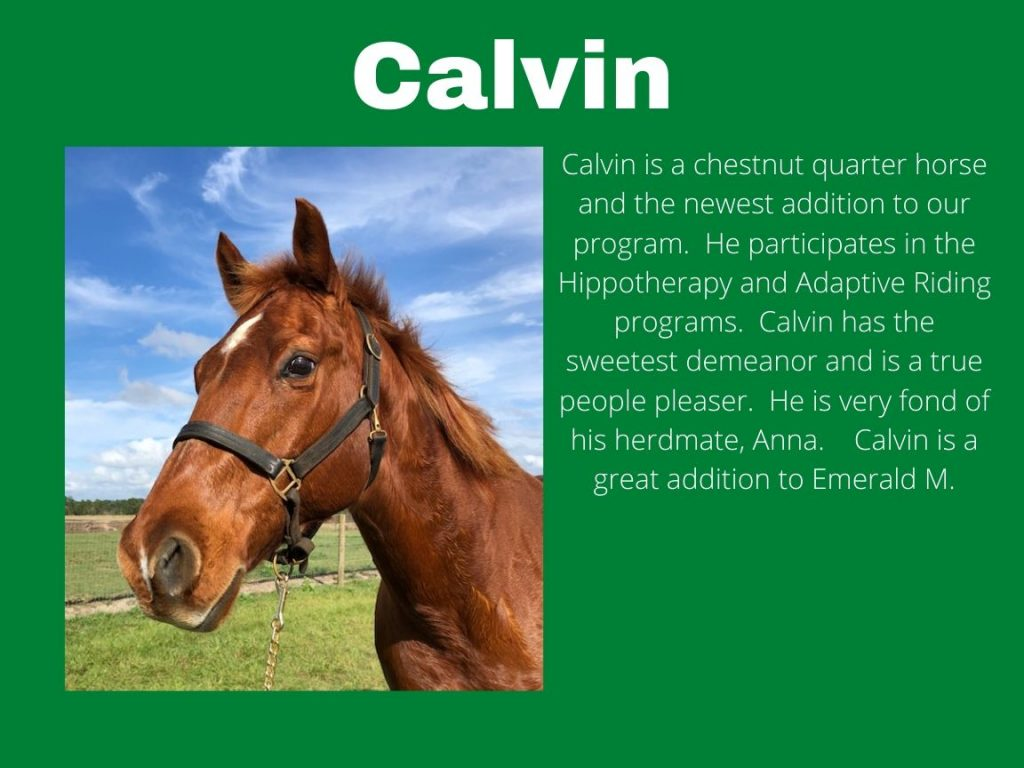 Calvin - Photos and Bio
