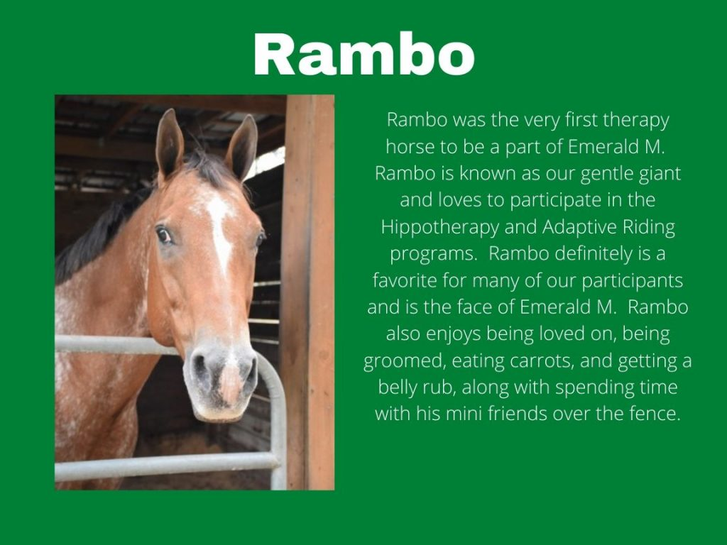 Rambo - Picture and Bio