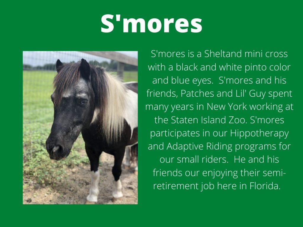 S'mores - Photo and Bio