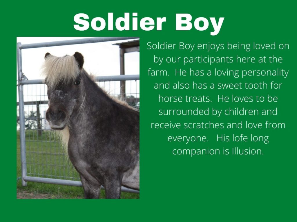 Soldier Boy - Photo and Bio