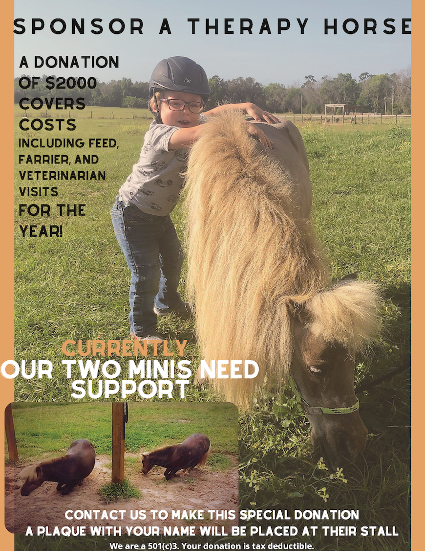 2021 Sponsor a therapy horse