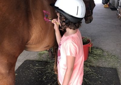 Girl Painting Horse