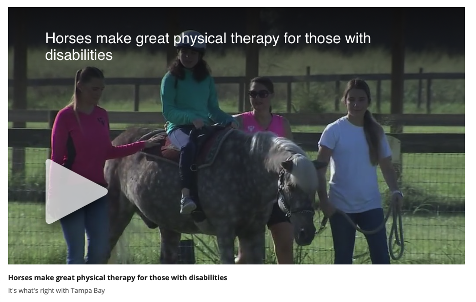 Fox 13 Interview with Emerald M Therapeutic Riding Center